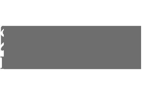 NOVIKOMBANK_GREY