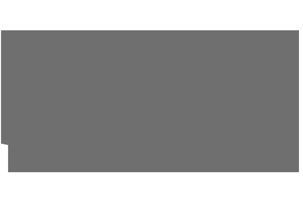 RTVI_GREY